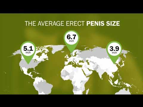 Liten penis